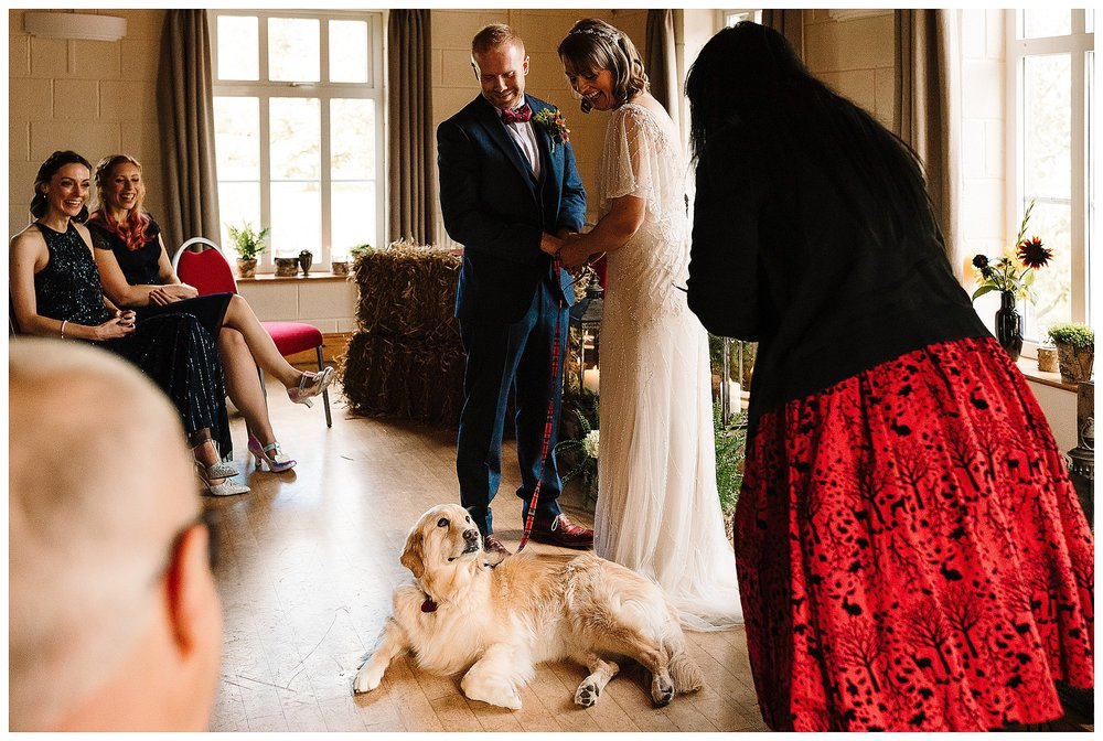 A dog looking at a celebrant during a wedding ceremony