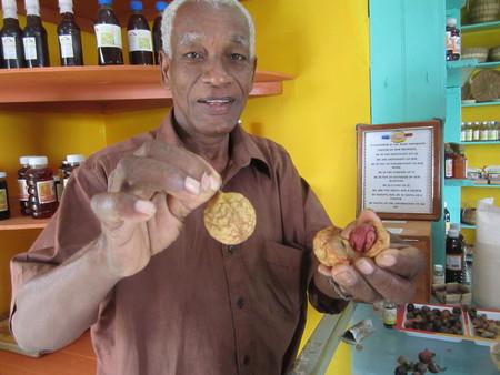 Bob-Desautels-Locavores-Digest-Grenada-2.jpg