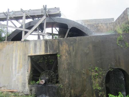 Bob-Desautels-Locavores-Digest-Grenada-9.jpg