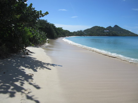 Bob-Desautels-Locavores-Digest-Carriacou-1.jpg