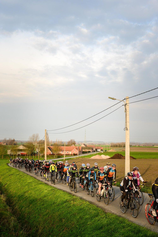 bikes-3.jpg