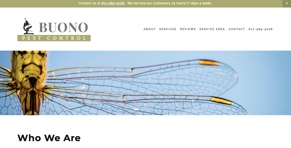 Buono Pest Control Website After About Page.png
