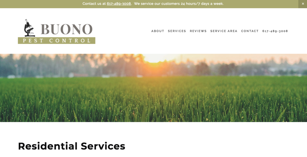 Buono Pest Control Website After Residential Services page.png