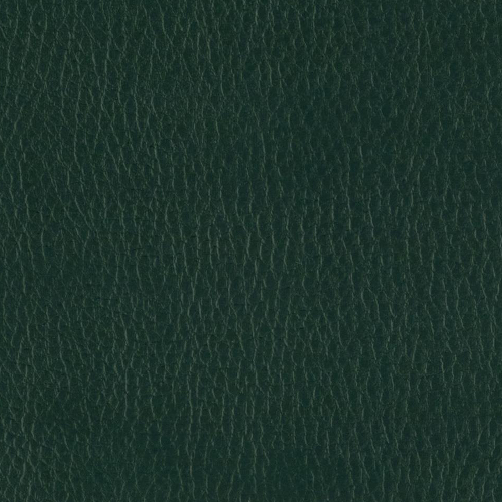 Giancarlo_Studio_Furniture_Leather_Sample_Green_3.jpg