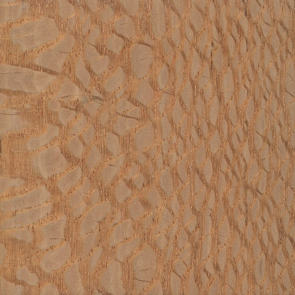 Giancarlo Studio Furniture Lacewood Swatch Finish.jpg