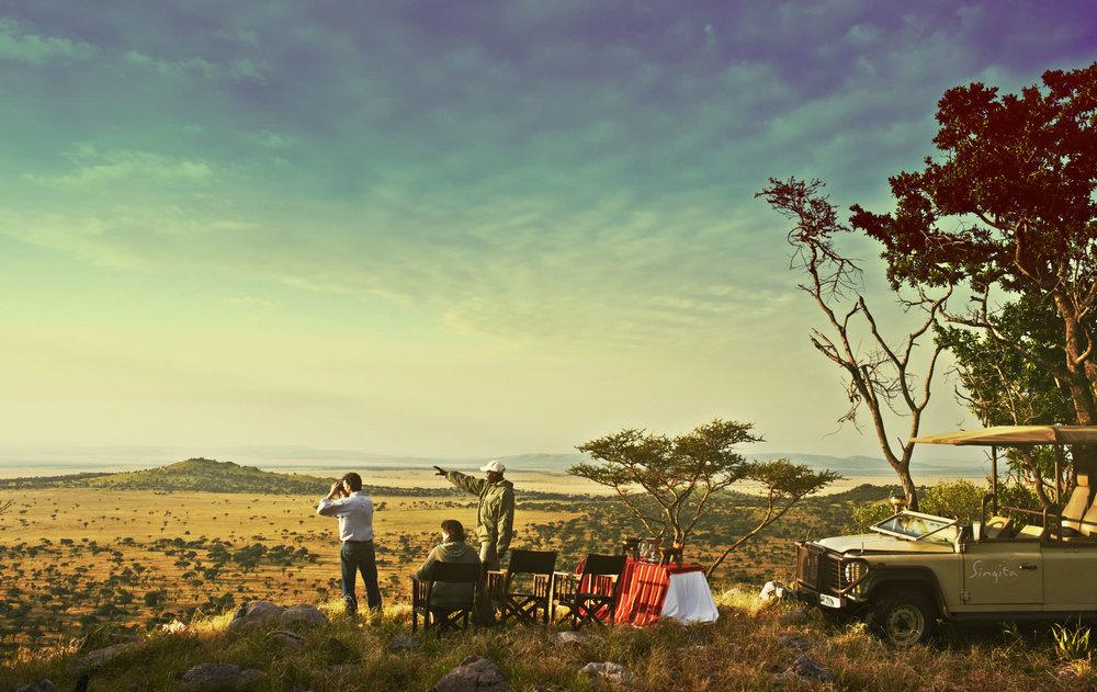 creations - safari.jpg