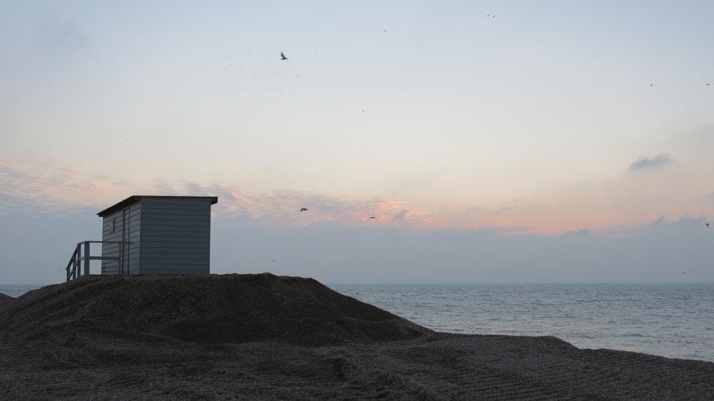 Bird Hide on Beach