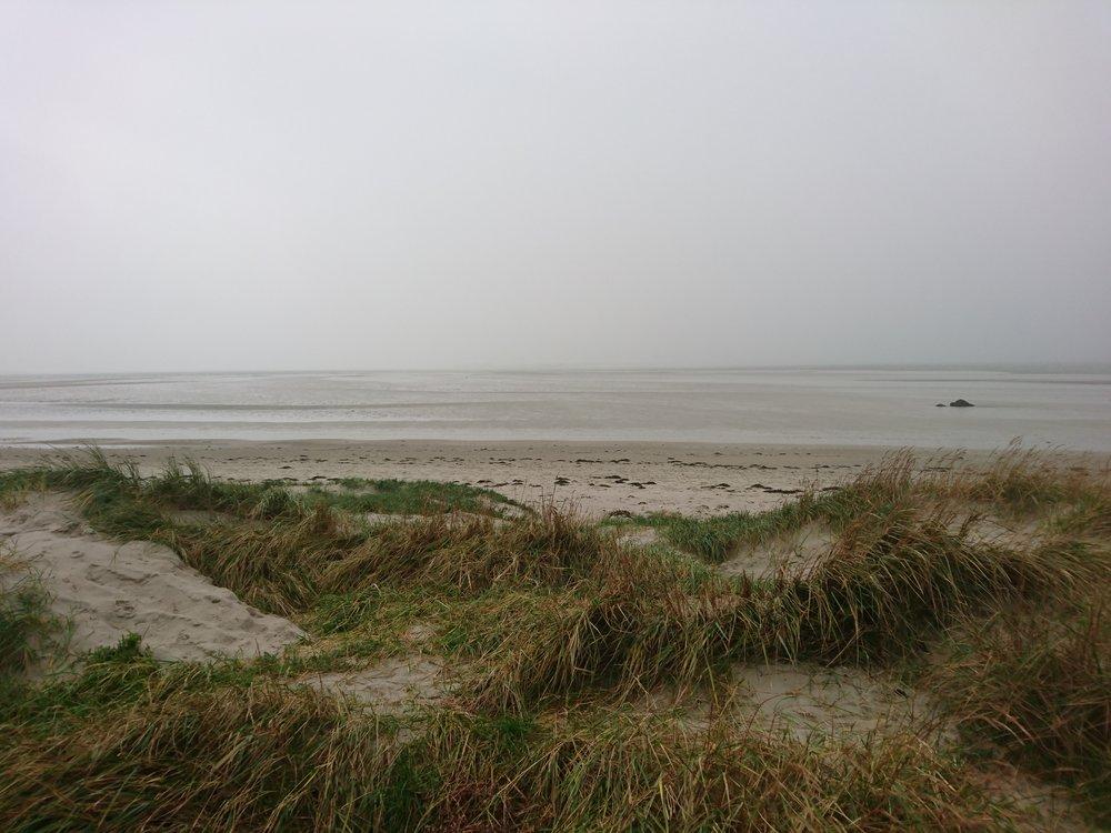 Dunes Thorney Island
