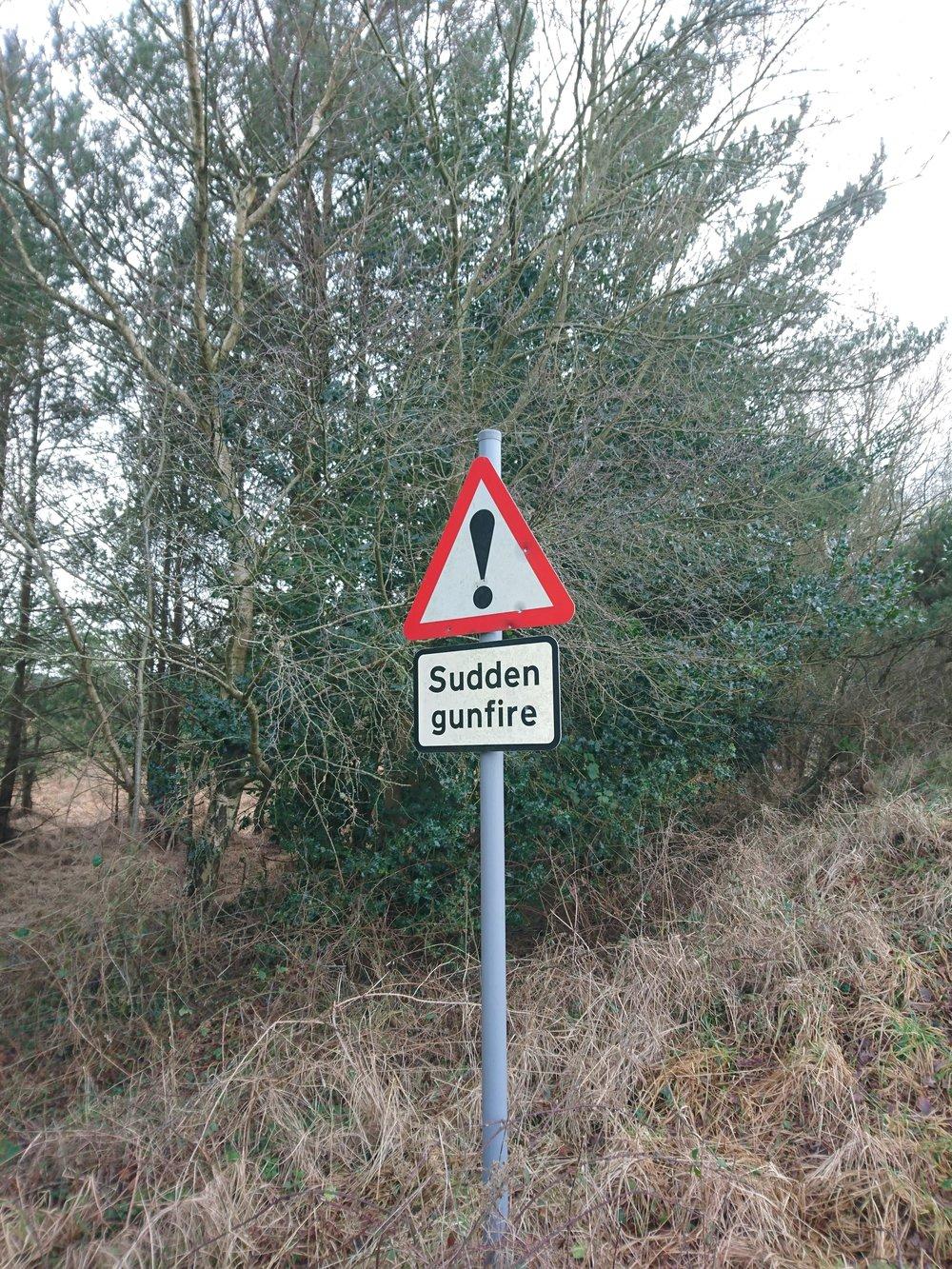 Slightly Disconcerting Sign