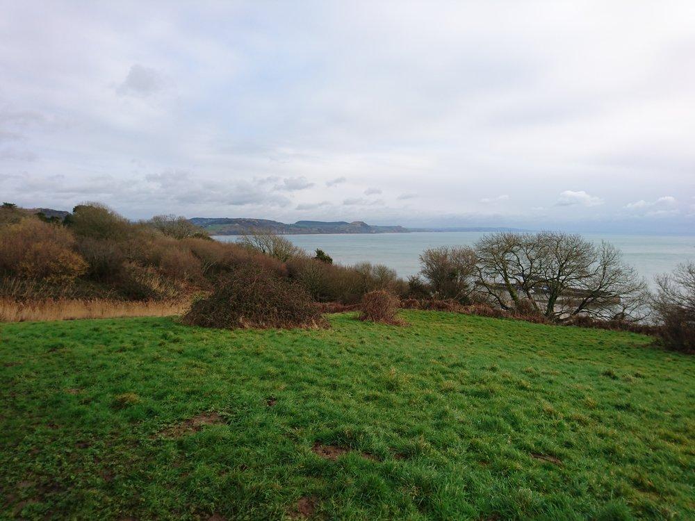 Cliffs above Lyme Regis