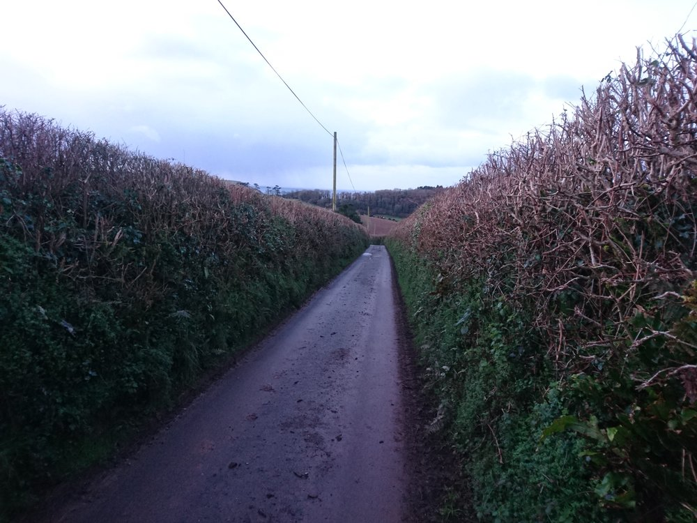 Lanes to Mothecombe Beach
