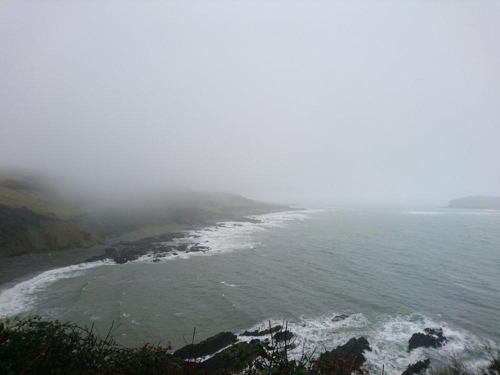 Damp Portnadler Bay