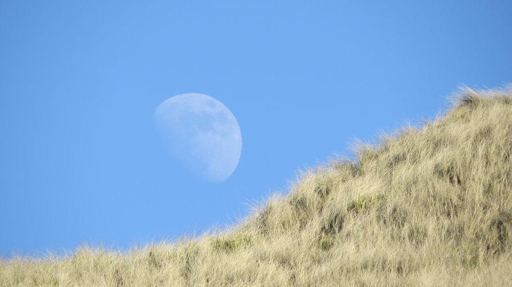 Moon & Dunes
