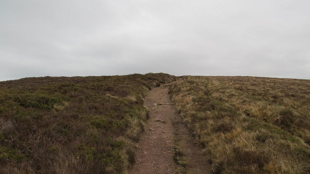 Heath Lined Path