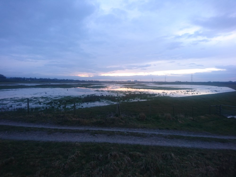 Sunset over Marshes