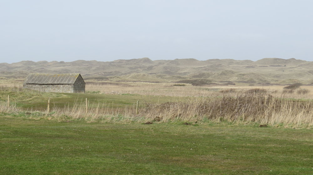 Llangennith Burrows