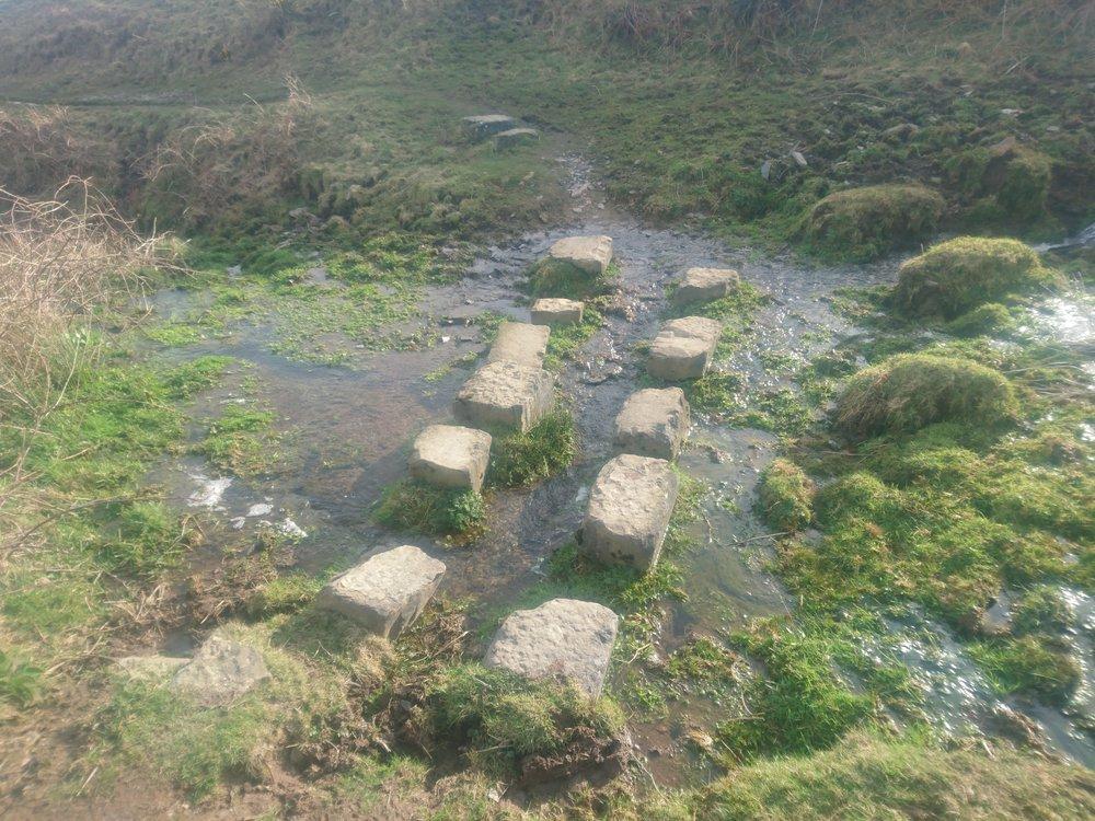 Random Stepping Stones