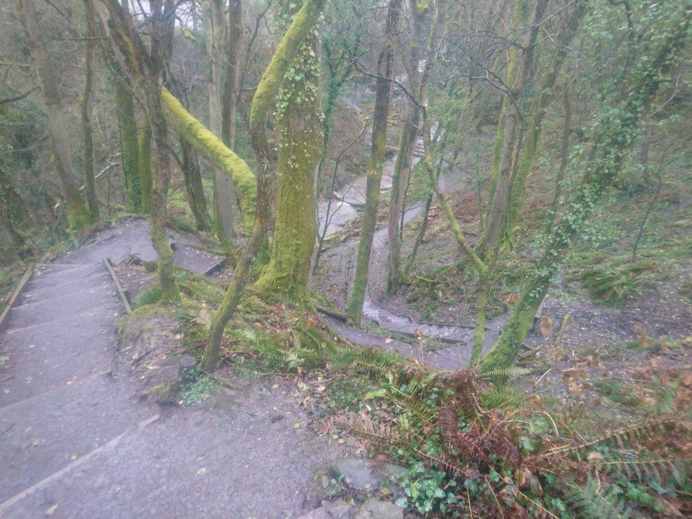 Steps near Penbryn