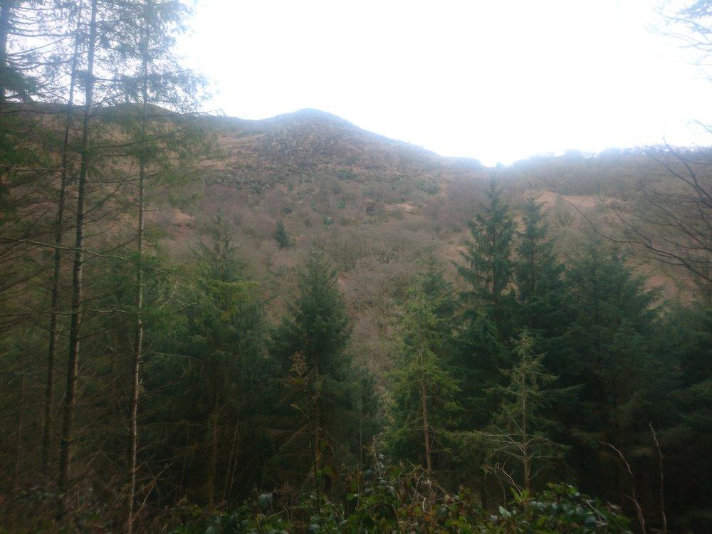 Llyfnant Valley