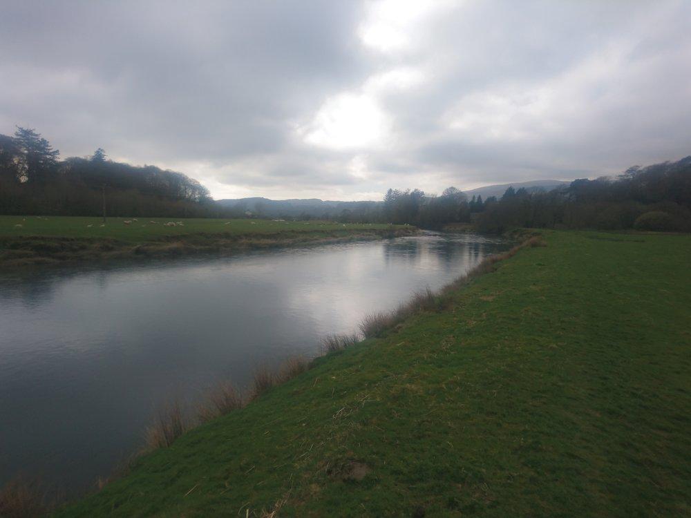 River Dovey