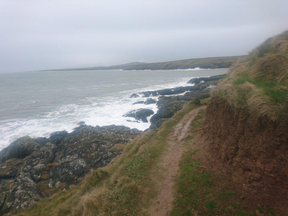 Narrow, Muddy Path