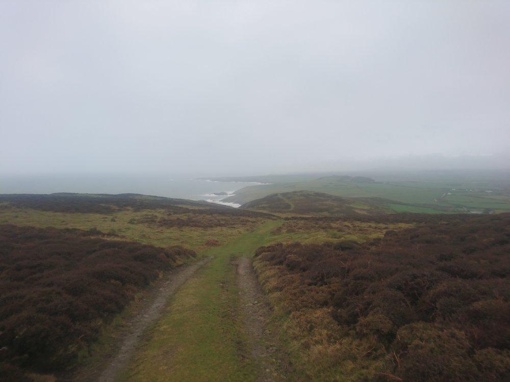Path Down from Mynydd Mawr