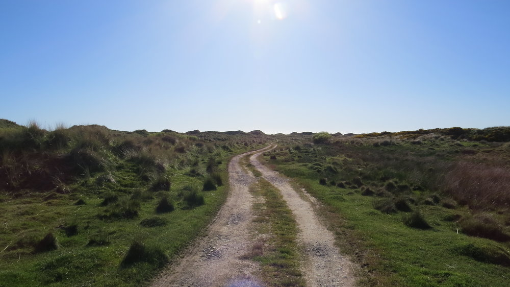 Track through Haverigg Dunes