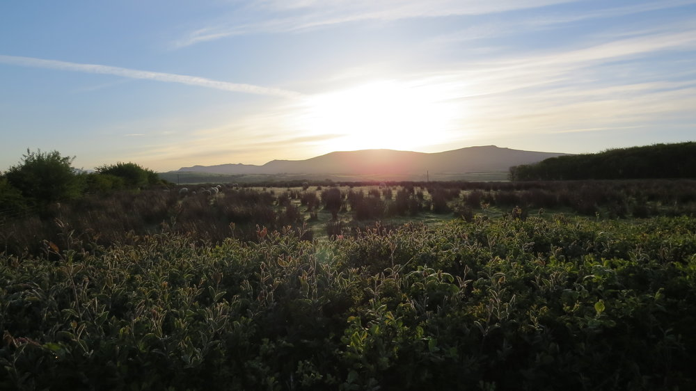 Morning View towards Fells