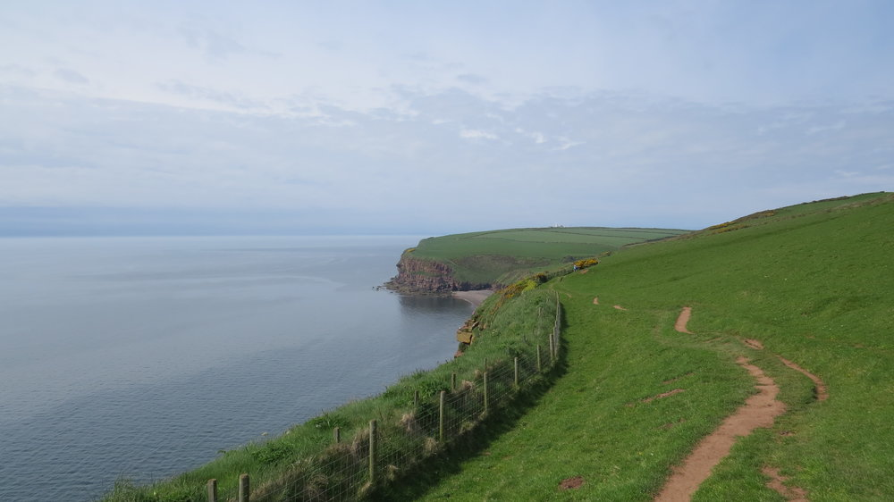 Cliff Paths after St Bees