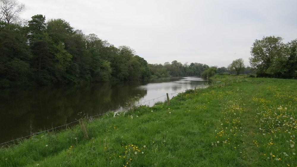 River Eden II