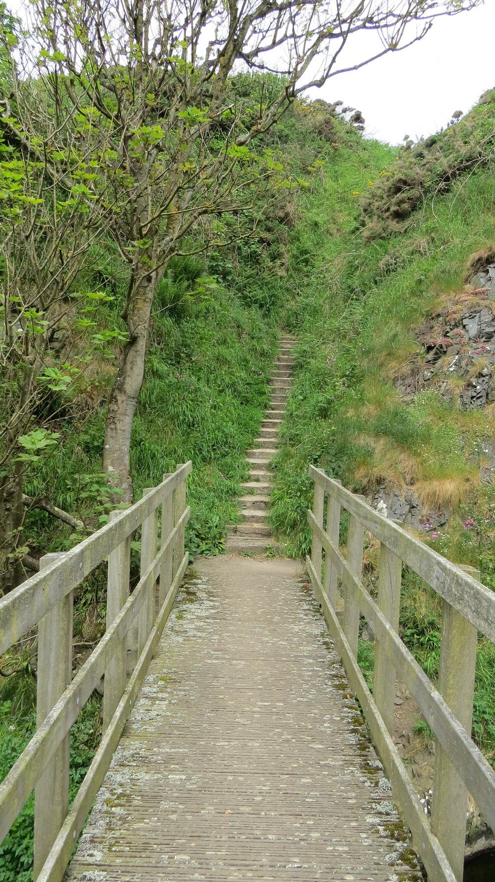 Bridge to Steep Stairs