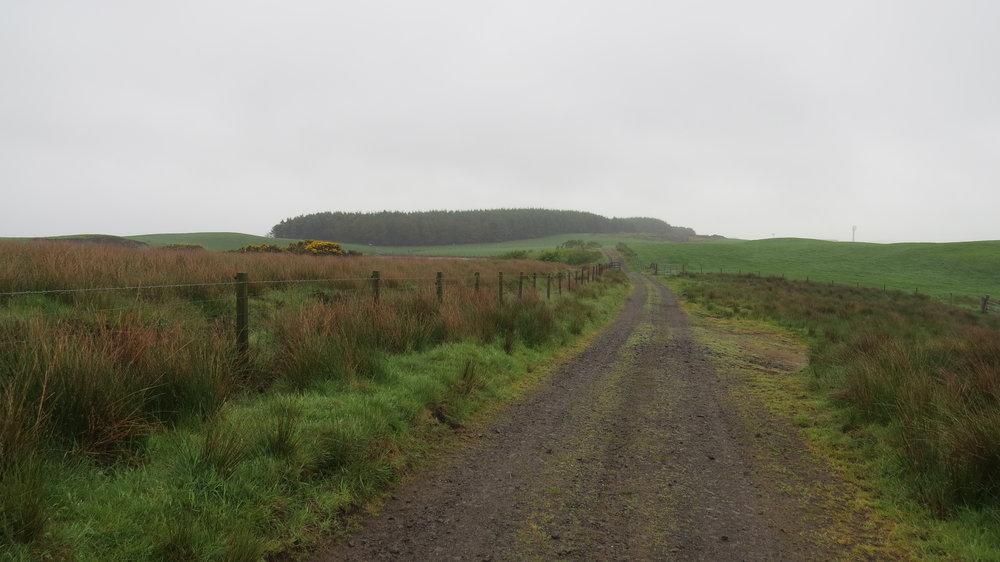 Farm Track Larbrax Moor