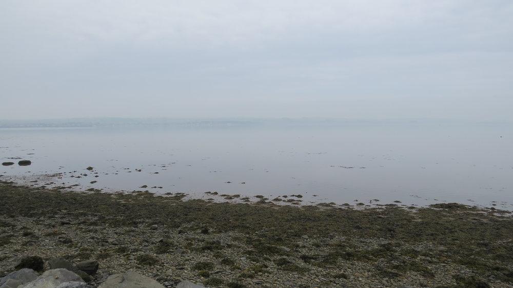 Murky Ryan Bay