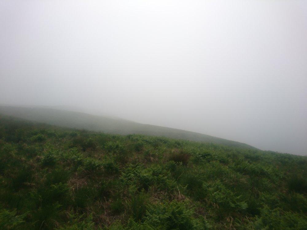 Haze Reappearing