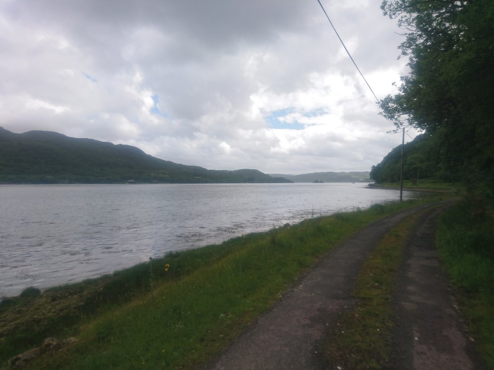 Track Walking by Loch
