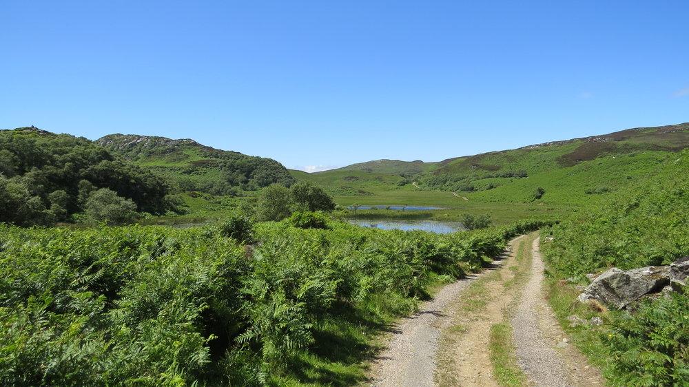 Track across the Plateau