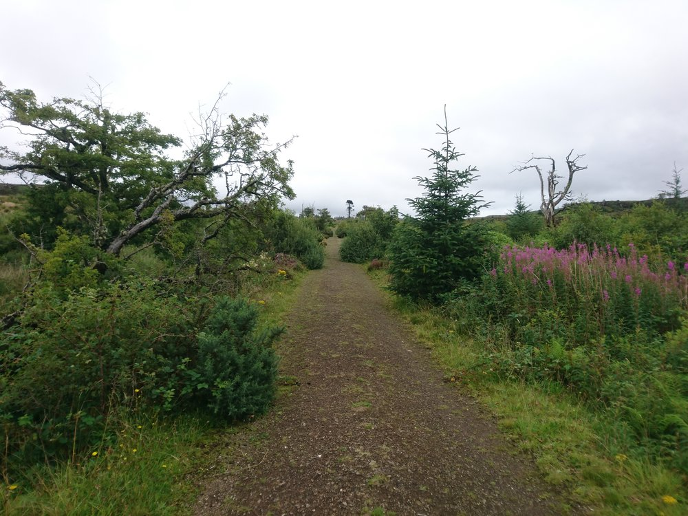 Lovely Track/Path from behind Dunvegan