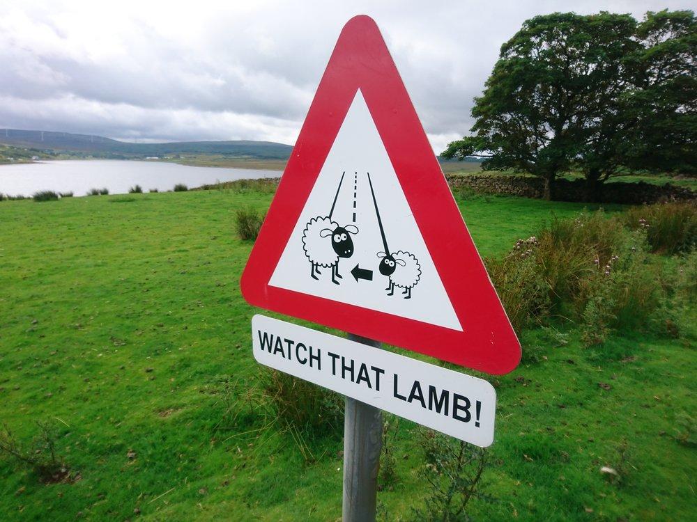 Interesting Sign