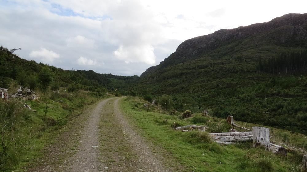 Climbing up through Reraig