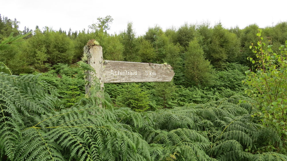 Nice Old Signpost
