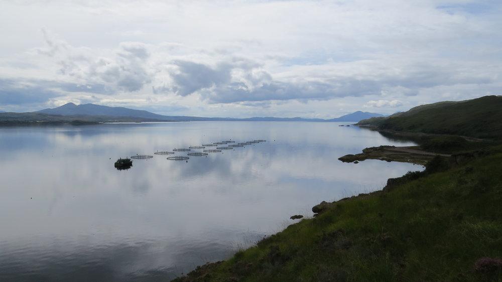 Salmon Farm Loch Kishorn