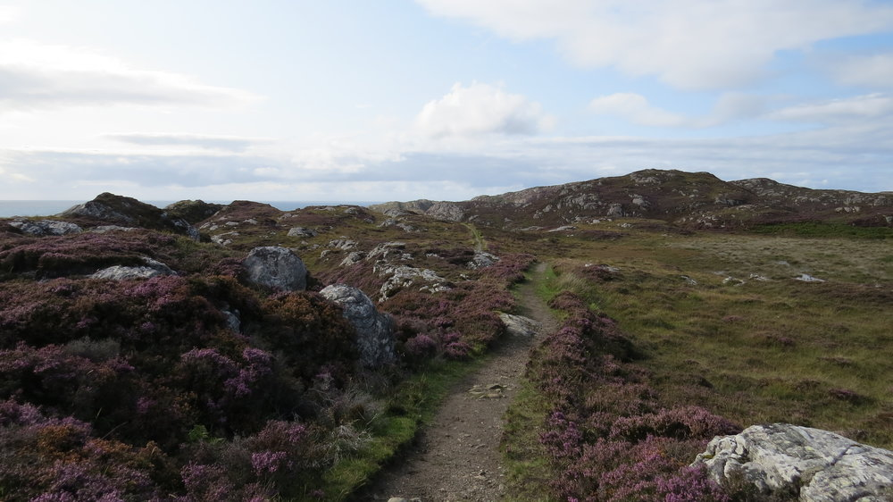 Stunning path from Achmelvich