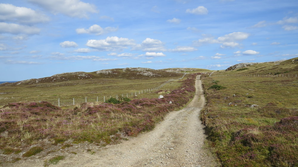 Track near Farr