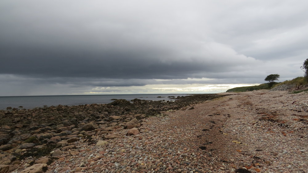 Beach after Helmsdale