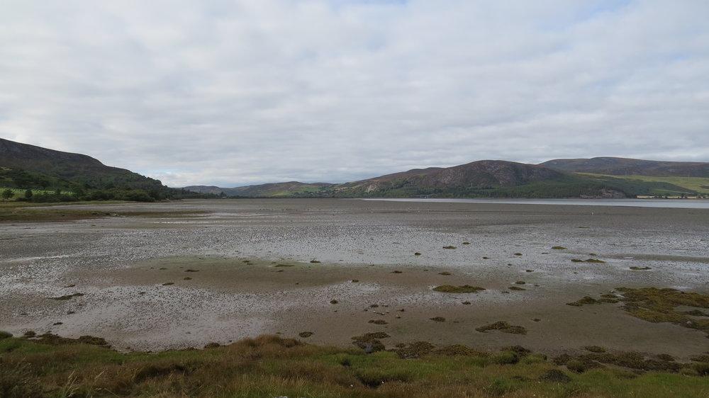 West Side Loch Fleet