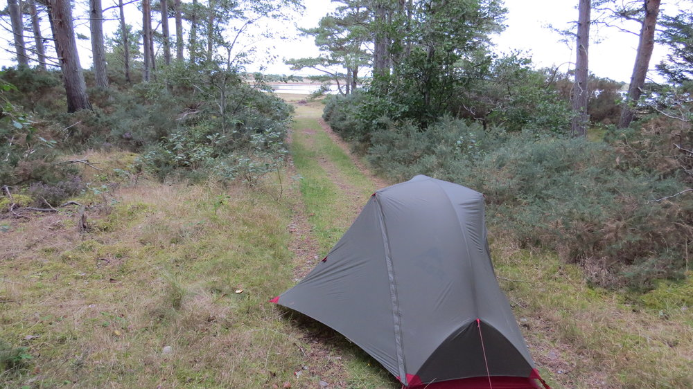 Woodland Pitch