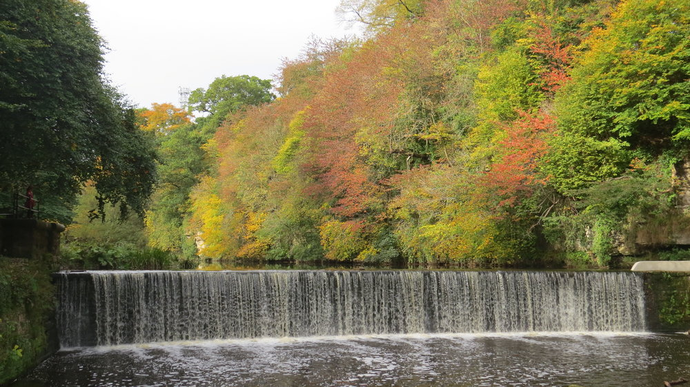 Autumn Colours over Weir