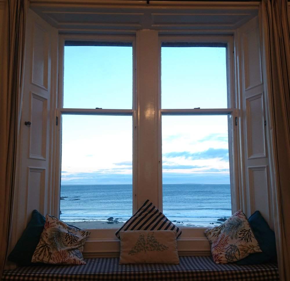 Puffin Palace View