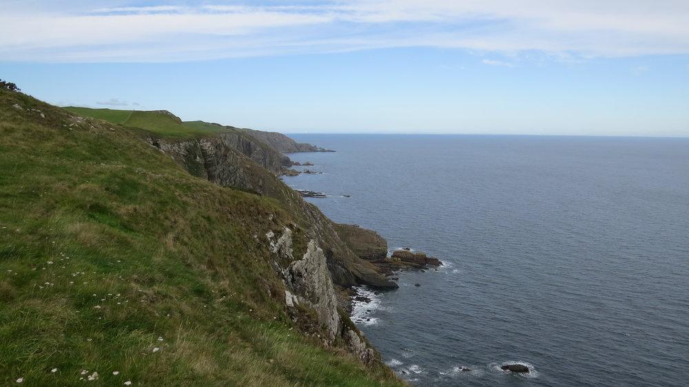 Cliffs before St Abb's Head