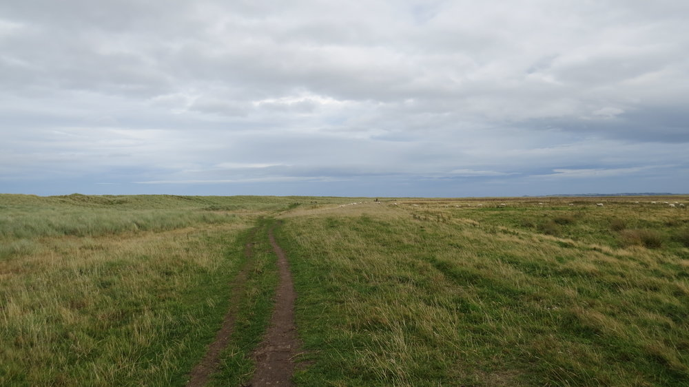 Track behind the Dunes